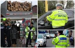 Nereguli cu carul descoperite la Sebiş, în urma unei acţiuni de amploare a poliţiştilor arădeni