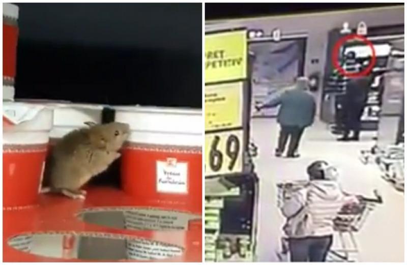 Kaufland aduce dovada VIDEO: Şoarecele din supermarketul de la Lebăda a fost plasat de clientul care l-a filmat!