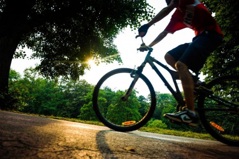 Cu bicicleta, pe pistă, între Arad şi Pecica!