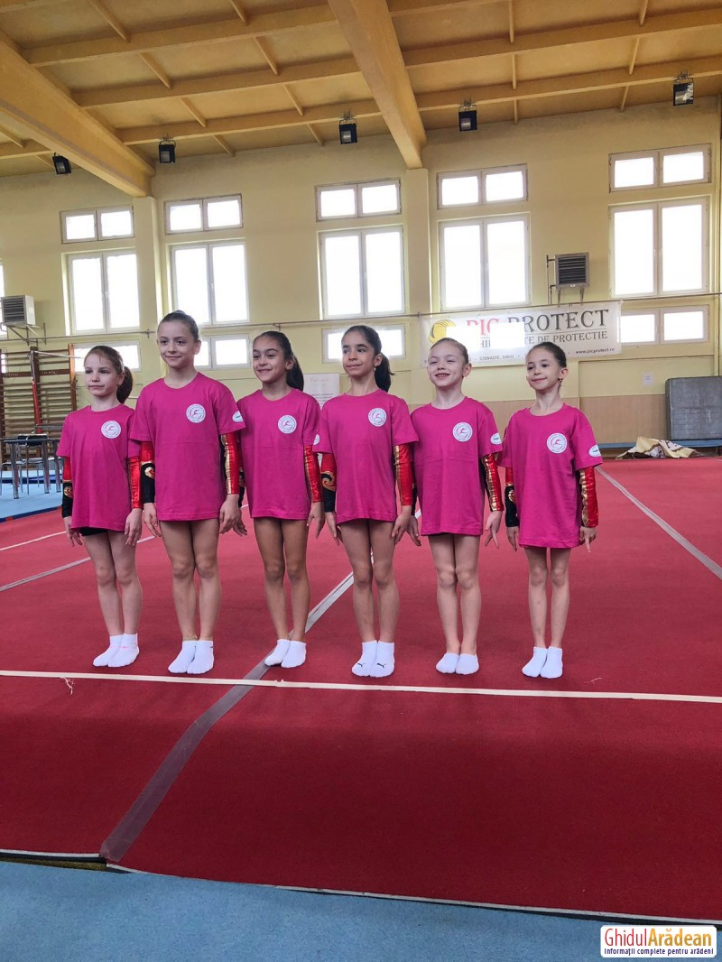 Gimnastele de la CSM Arad au adus acasă 5 medalii de aur !