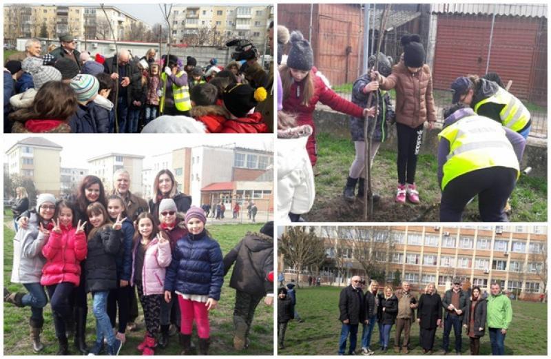 """Elevii de la Şcoala Gimnazială Caius Iacob au marcat """"Şcoala Altfel"""", plantând puieţi de arbori în curtea şcolii"""