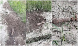 Un locuitor din Mocrea a descoperit o Bombă de aruncător de calibru 82 mm