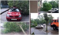Doi copaci puşi la pământ şi un acoperit luat de vânt este bilanţul unei mici furtuni de vară de duminică după amiaza