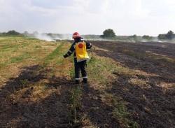 Incendiu de vegetație uscată în apropiere de Aeroportul Arad