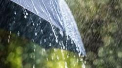 Vin ploile din această noapte, în vestul țării