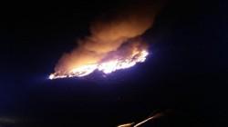 Un incendiu violent a izbucnit la groapa de gunoi de la ieșirea din Arad