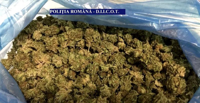 Prinși cu....cannabisul în sac ! Doi tineri arădeni reținuți pentru trafic de droguri