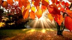 Află cum va fi vremea până în luna octombrie
