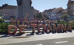 Mai ai două zile în care te poţi bucura de  Simfonia Florilor de Toamnă în piaţa Avram Iancu – Vezi care este programul spectacolelor artistice