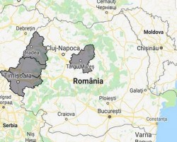 Alertă ANM: Cod galben de vreme severă imediată în județele Arad, Bihor,Timiș - intensificări ale vântului care vor atinge și depăși la rafală 55...60 km/h