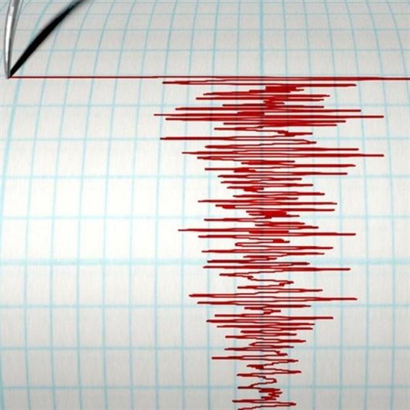 Cutremur în Banat cu magnitudinea de 3,7 pe scara Richter, vineri dimineața