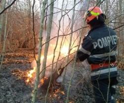 INCENDIU puternic la Vidra: au ars 8 ha de vegetație uscată și litieră