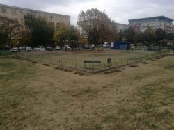 În Arad se amenajează primul parc destinat recreării patrupezilor