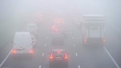 Alertă ANM! Cod galben de vreme severă imediată în județul Arad - ceață care reduce vizibilitatea local sub 200 m și izolat sub 50 m
