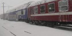 Mai multe trenuri au fost oprite pe liniile din judeţul Arad, după prăbuşirea unor copaci