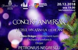 Concertul de Crăciun al Filarmoniicii din Arad