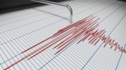 Cutremur de 3,8 grade în Banat
