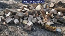 Transport ilegal de lemne depistat de polițiștii arădeni