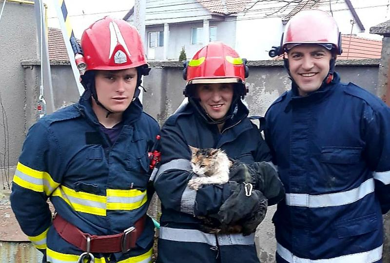 Pisică salvată la Andrei Șaguna, după ce a căzut în fântână