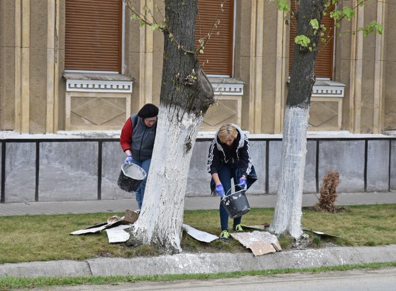 Peste 400 de voluntari au făcut curat la Pecica şi în satele aparţinătoare