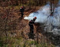 ATENȚIE șoferi ! DN 7 afectat de fum datorită unui incendiu de vegetație, în apropiere de Vărădia de Mureș