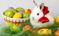 VEZI cele mai frumoase mesaje de Paște