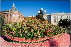 """Festivalul """"FlorAr"""" începe! Figurine din mii de flori, muzică și dansuri stradale"""
