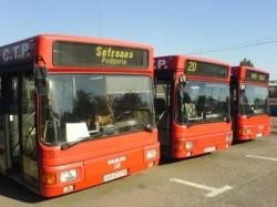 Perioada vacanței școlare aduce modificări în transportul public din Arad