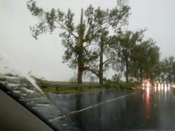 Pericol rutier pe DN79! Primarul Alexandru Simandi solicită intervenția Companiei Naționale de Administrare a Infrastructurii Rutiere