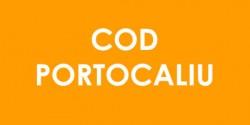 Cod PORTOCALIU de vijelii, grindină și ploi torențiale în Arad și alte peste 30 de județe