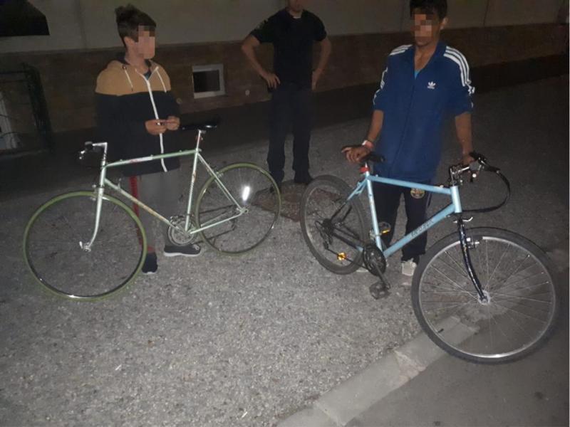 Doi minori au încercat să se ascundă, după un copac, de jandarmi după ce au furat o bicicletă