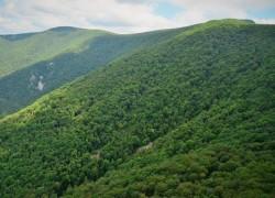 Harta parcurilor naționale și naturale administrate de Romsilva este publicată pe pagina de internet a regiei