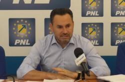 Din ce comisii face parte Gheorghe Falcă în noul parlament european