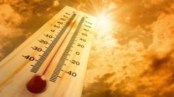 Temperaturi fără precedent înregistrate în trei țări europene. Catedrala Notre Dame, în pericol din cauza căldurii