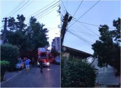 Crengi de 10 metri rupte în urma furtunii de ieri, căzute pe firele de curent
