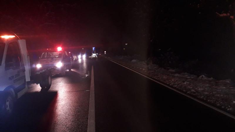 Accident cu cinci răniți dintre care trei copii, pe D.N. 7. Impact frontal provocat de un șofer care a intrat pe contrasens