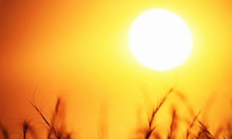 Alertă meteo! COD GALBEN de caniculă în următoarele trei zile