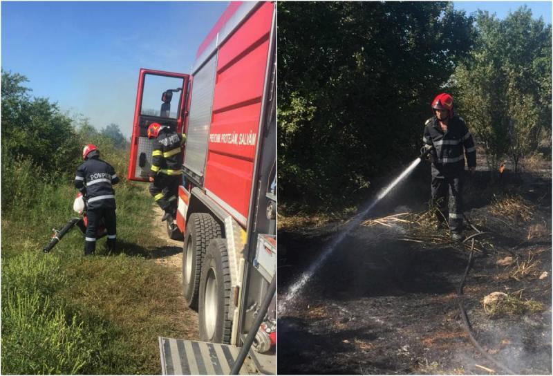 Incendiu violent de vegetație la ieșire din Arad