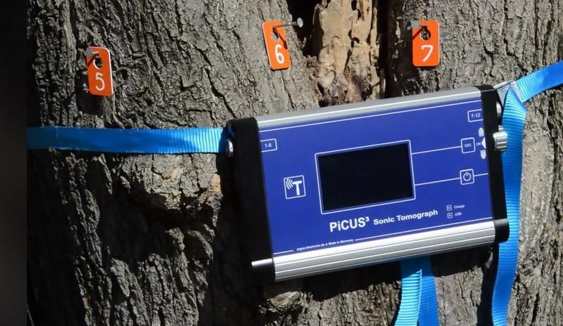 Tomograf pentru scanarea copacilor: o achiziție a Primăriei pentru un oraș verde