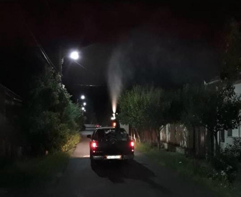 Dezinsecții la sol contra țânțarilor, gândacilor, muștelor și târâtoarelor, în municipiu