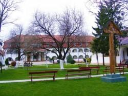 Primăria Arad demarează lucrările pentru amenajarea a două zone verzi în municipiu