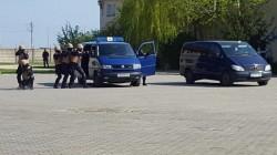 Șase persoane au fost trezite cu noaptea în cap de polițiștii S.I.C. Arad