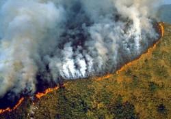 Cea mai mare pădure a planetei arde de peste 16 zile. Fumul provocat de incendii a lăsat Sao Paulo în beznă