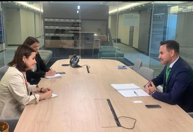 Europarlamentarul Gheorghe Falcă s-a întâlnit cu E.S. Luminița Odobescu, ambasadorul României la Uniunea Europeană