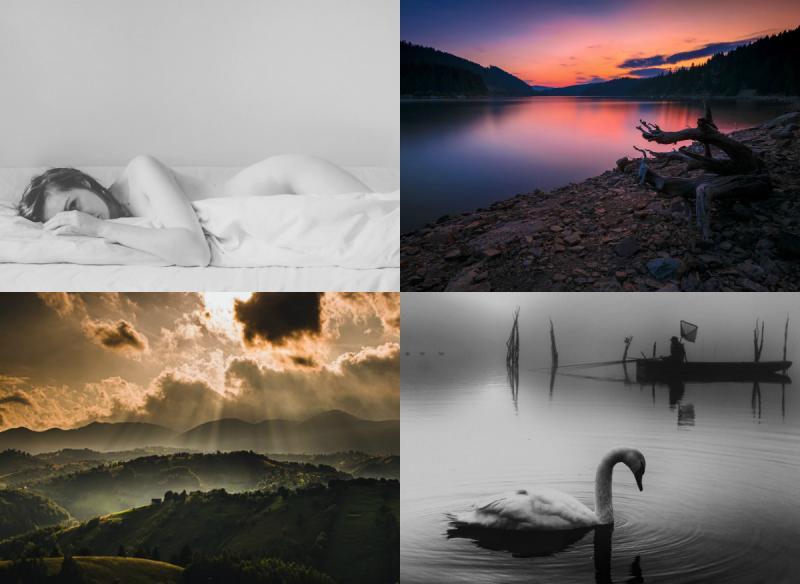 """Jurizarea fotografiilor din cadrul Salonului Internațional de Fotografie """"Ars Fotografica"""" Ediția a XIX-a"""