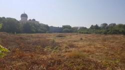 Primarul Călin Bibarţ spune NU construcţiei unui complex rezidenţial pe terenul de la Tricoul Roşu, dar spune DA pentru un parc în această zonă