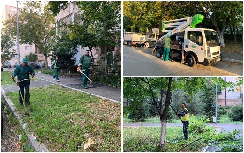 A început curăţenia de toamnă în Municipiul Arad! vezi care e programul pe cartiere!