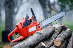 Bărbat tăiat cu drujba, găsit de un muncitor în pădurea din Ignești