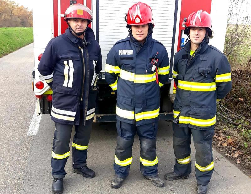 Orice VIAȚĂ CONTEAZĂ ! Duminică dimineața, trei pompieri arădeni au salvat o căprioară