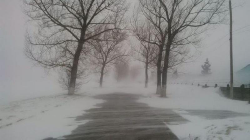 Alertă meteo: cod galben de viscol și zăpadă în Arad, Timiș și alte 15 județe